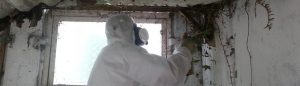 Professional Asbestos Removal and Assessments.